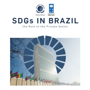 SDGs in Brazil – The Role of the Private Sector